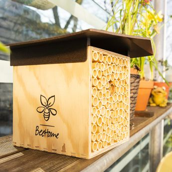 BeeHome Bienenhaus Classic
