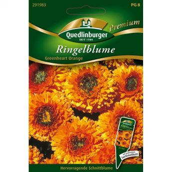 Ringelblume, Greenheart orange